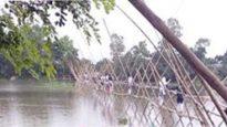 জামালগঞ্জের ফেকুল মাহমুদপুরে দেশের দীর্ঘতম বাঁশের সাঁকো