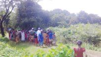 জামালগঞ্জে লোকালয়ে বাঘ, আতঙ্কে গ্রামবাসী