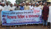 রোহিঙ্গা গণহত্যার প্রতিবাদে দক্ষিণ সুনামগঞ্জে বিক্ষোভ