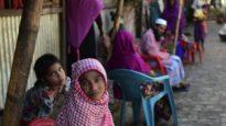 রোহিঙ্গাদের জন্য ৩০০০ কোটি টাকার প্রতিশ্রুতি