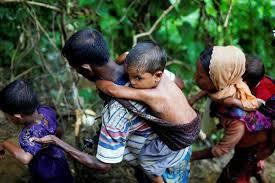 প্রতিদিন ৩০০ রোহিঙ্গাকে ফেরত নেবে মিয়ানমার!