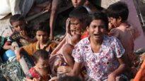 রোহিঙ্গা নিধন ও মজলুমানের কান্না