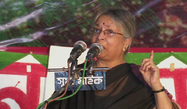 বাকস্বাধীনতা কাড়বে ডিজিটাল নিরাপত্তা আইন : সুলতানা কামাল