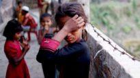রোহিঙ্গাদের মাঝে মিয়ানমারের আবেদনপত্র বিতরণ করা হয়নি: নাইপিদো