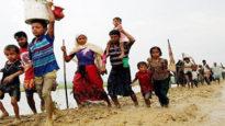 ভারত থেকে ১৩০০ রোহিঙ্গা প্রবেশ করেছেন বাংলাদেশে