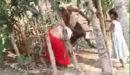প্রবাসীর স্ত্রীকে প্রকাশ্যে লাঠিপেটার ভিডিও ফেসবুকে ভাইরাল