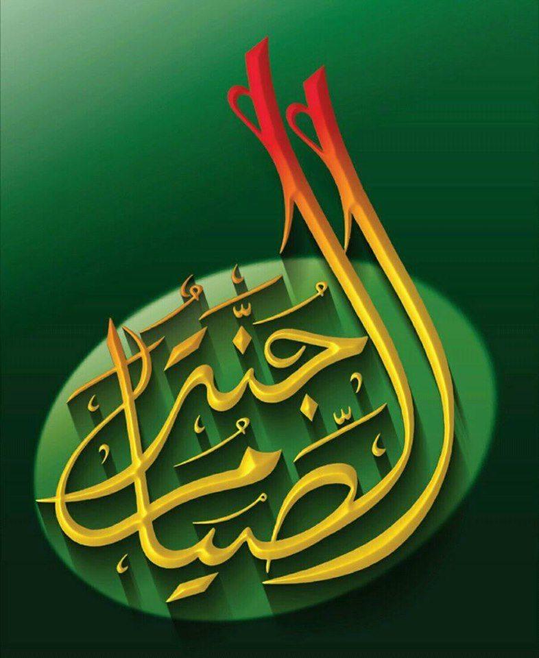 সাংবাদিক মাহফুজ উল্লাহ স্মরণে জাতীয় জনতা ফোরামের ইফতার