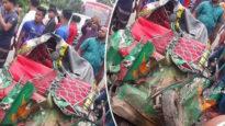 কুমিল্লায় বাসচাপায় অটোরিকশার ৭ যাত্রী নিহত