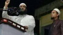 স্বৈরতন্ত্র প্রতিষ্ঠার ইচ্ছা থাকলে 'এক নেত্রী এক দেশ' ঘোষনা করুন : মামুনুল হক