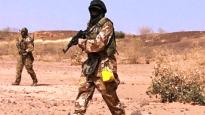 নাইজারে সামরিক ঘাটিতে সন্ত্রাসী হামলায় ৭১ সেনা নিহত