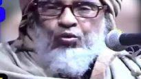 শায়খুল হাদিস মাওলানা নুরুল ইসলাম খানের মতো একজন পন্ডিতের অপমানে অপমানিত হলাম