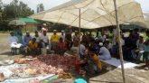 মাদানিয়া ওয়েলফেয়ার ট্রাস্ট'র পক্ষ থেকে জামালগঞ্জে  কুরবানীর গোশত বন্টন সম্পন্ন